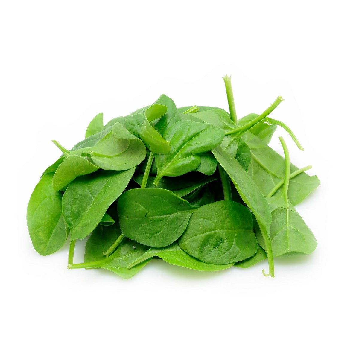 Spinach- Baby Spinach