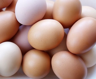 Eggs Free Range - 15 Pack