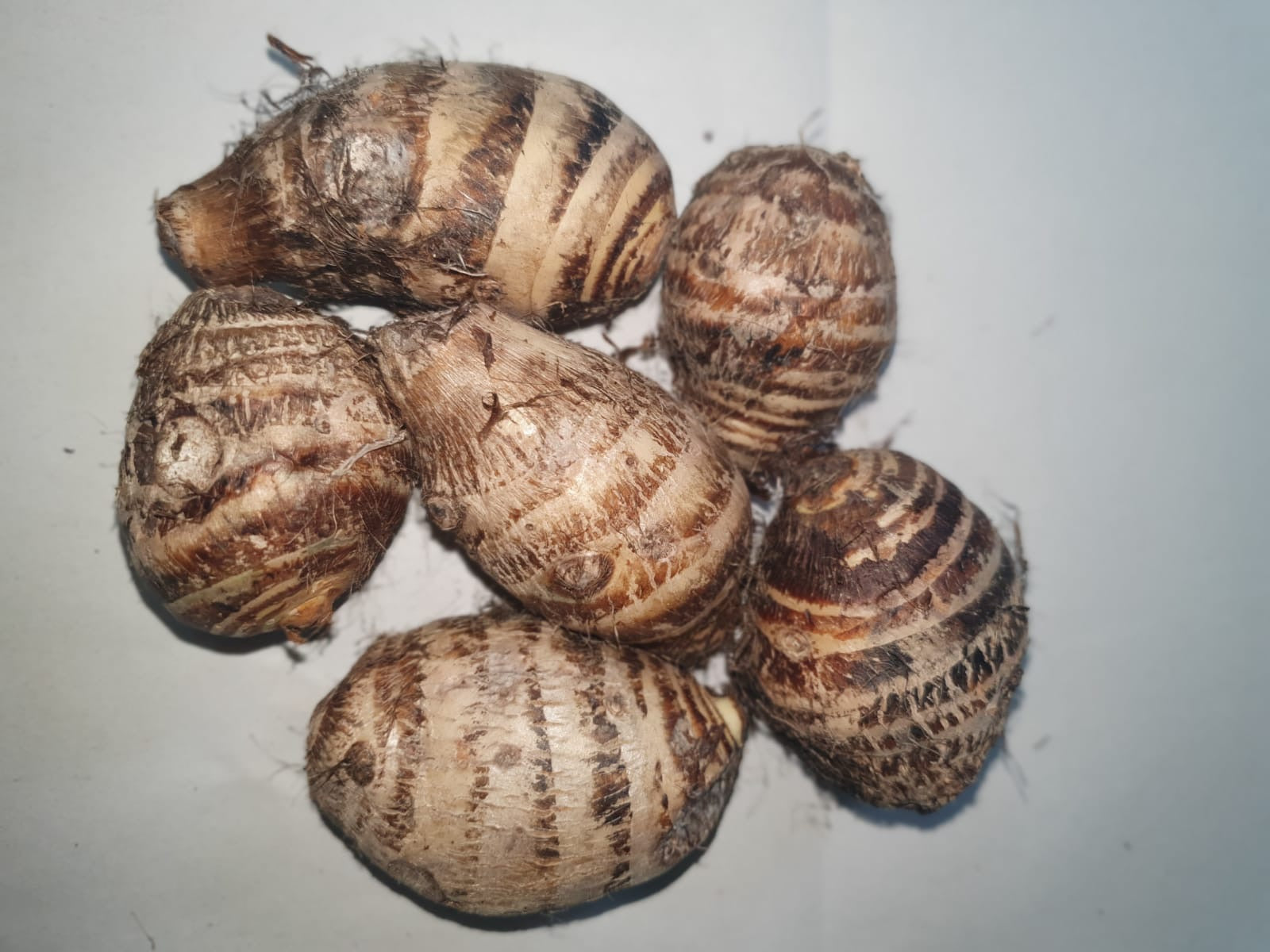 Mukhi-Washed 500g