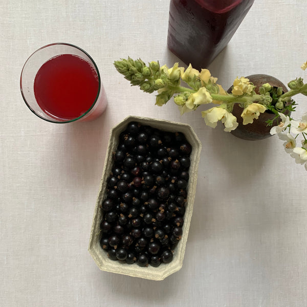 Blackcurrant Cordial 500ml