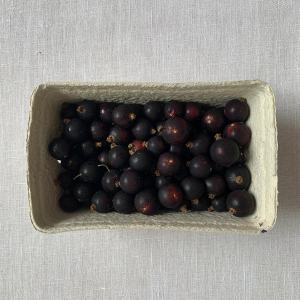 A Punnet of Blackcurrants