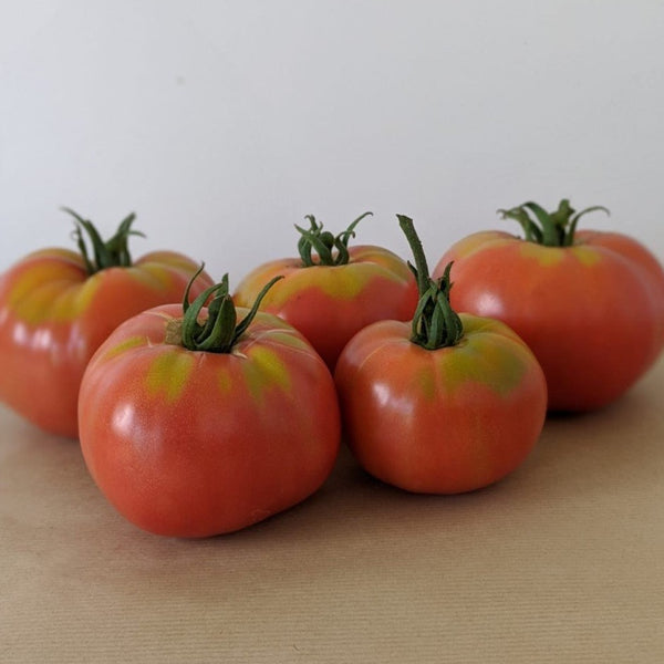 Berner Rose Tomatoes