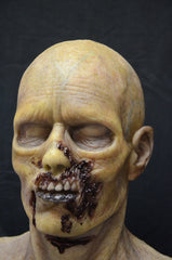 rotten corpes zombie silicone mask