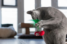 Load image into Gallery viewer, Catnip Crinkle Toy - Cherries