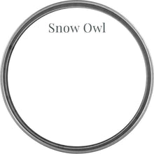 Load image into Gallery viewer, Wise Owl One Hour Enamel Paint