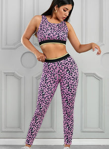 New Leopard Print Women Sports Bra and Legging