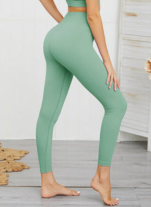 Squat Proof Solid Color Women Sports Leggings-JustFittoo