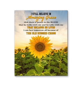 I Still Believe In Amazing Grace Canvas With Frames