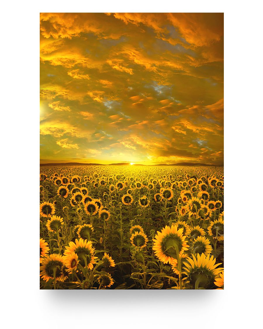 Sunflower Sunset Artwork Poster 16x24