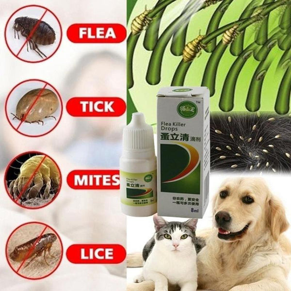 Pets Anti-flea Drops dogs. Insecticide Flea, Lice, Insect Killer. Liquid Cat Skin Healthy Care Spray Deworming Treat Products