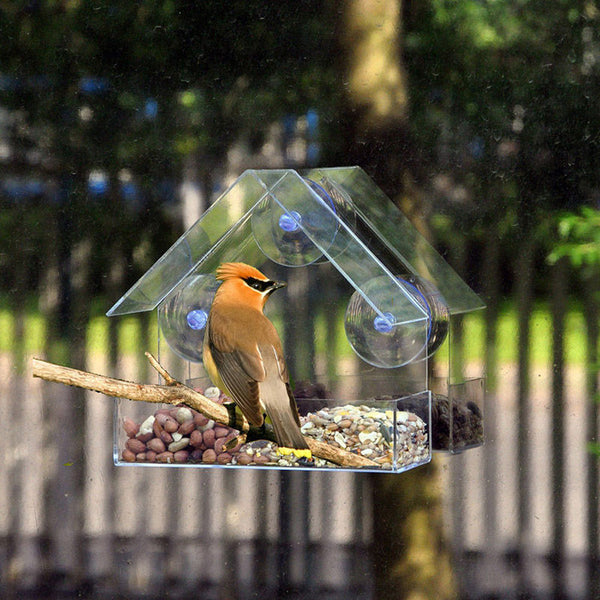 Bird Feeder, Clear Glass Window Viewing. Hanging Suction House Type. See Natures Show.
