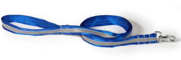 blue/silver reflective leash