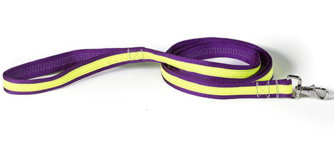 purple/yellow reflective leash