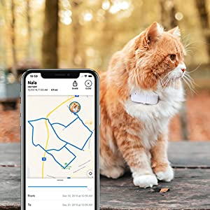 Smart pet Devices Cats GPS tracker