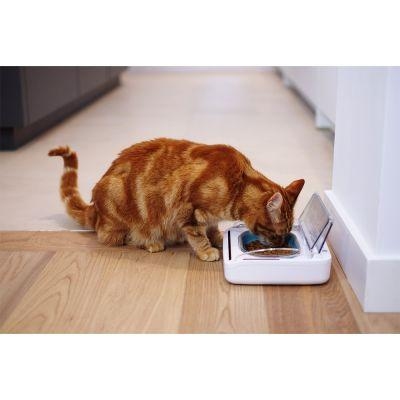 SureFeed Sealed Pet Bowl - For Dogs & Cats- Motion-Activated Lid Keeps Food Fresher - Cat Out Of House.co.uk