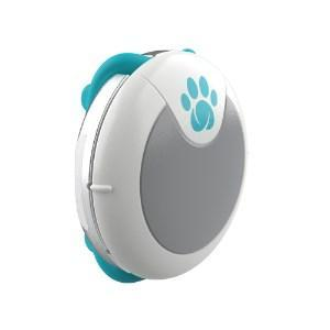 SureFlap Animo Activity and Behaviour Monitor for Dogs - Cat Out Of House.co.uk