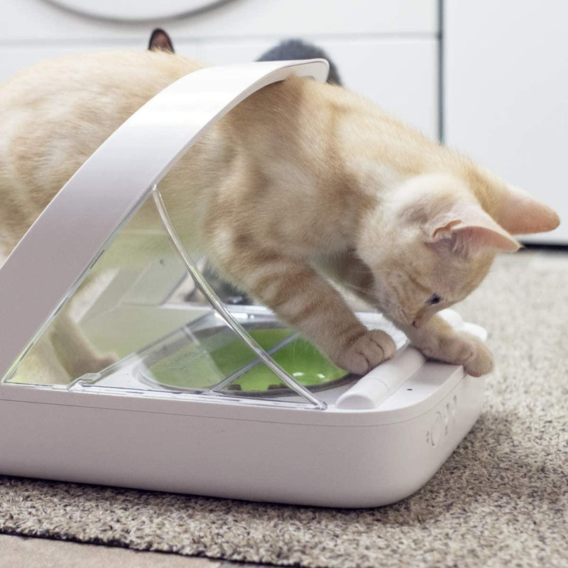 Sureflap Microchip Pet Feeder Connect & WiFi Hub Bundle - Cat Out Of House.co.uk