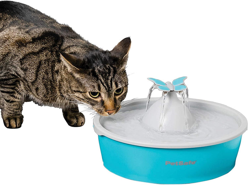 Petsafe Drinkwell® Butterfly Pet Fountain - Cat Out Of House.co.uk