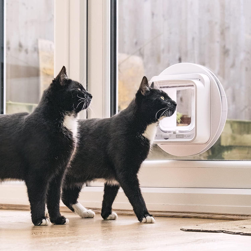 Sureflap Microchip Cat Flap Connect - Dualscan Technology- App Controlled - Cat Out Of House.co.uk
