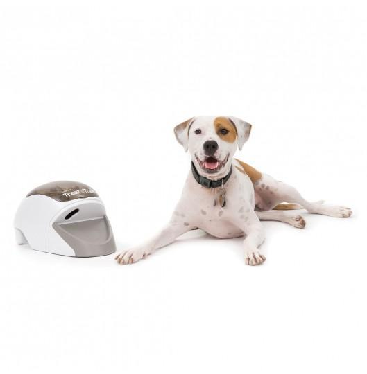 Petsafe Treat & Train™ Remote Reward Dog Trainer - Cat Out Of House.co.uk