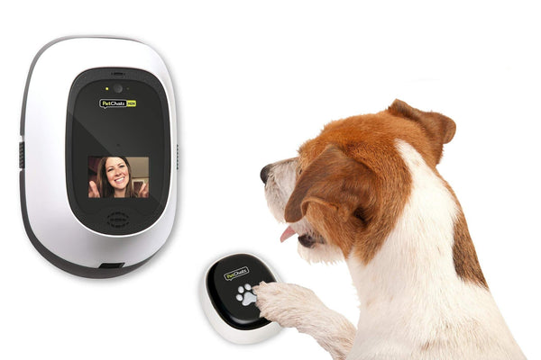 PetChatz HDX and PawCall HDX Bundle: 2-Way Audio & Video Pet Treat Camera & Accessory, HD 1080p, Motion/Sound Detection Smart Video Recording, - Cat Out Of House.co.uk
