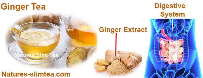 Ginger The Detox Tea