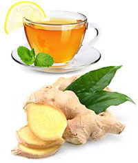 shop ginger tea bags online