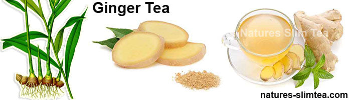 Ginger Tea Extract