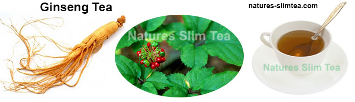 Ginseng Tea The Plant