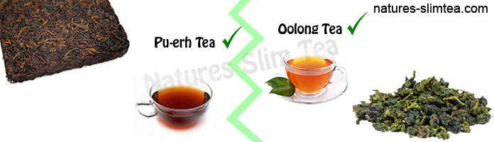 Organic Pu-erh or Oolong tea