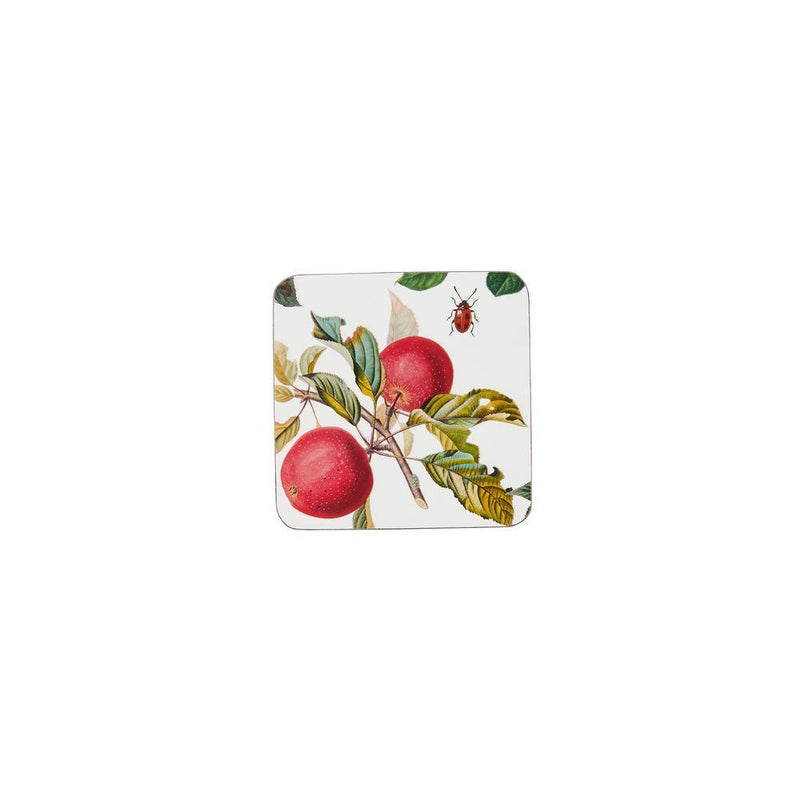Corked Coaster Pk 4 RHS Fruits