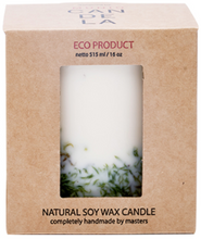Load image into Gallery viewer, MUNIO CANDELA : Soy Wax Candle:Moss 515ml