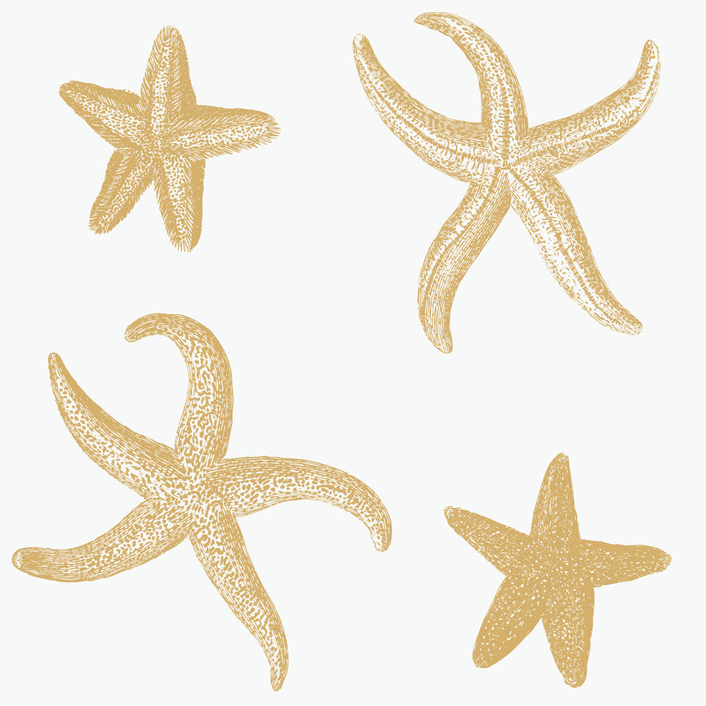 Wall Tile StarFish in Sand