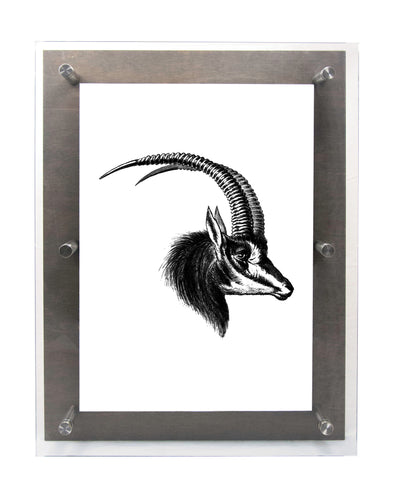 ANTELOPE 2 in Mitchell Black - Wood & Acrylic Frame