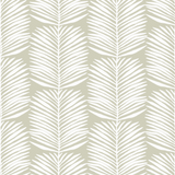 Betty Palms - Organic Wallpaper Collection