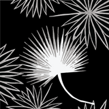 Cabbage Palm - Black Wallpaper - Bohemian Bungalow Collection