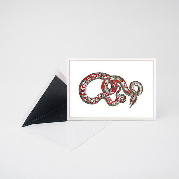 """PYTHON"" LETTERPRESS BLANK NOTE CARD"