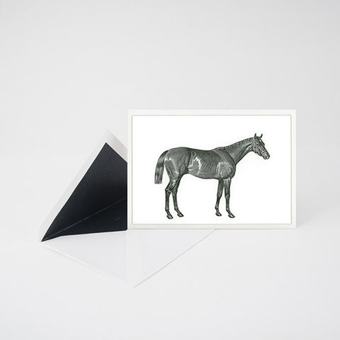 """THOROUGHBRED"" LETTERPRESS CARD"
