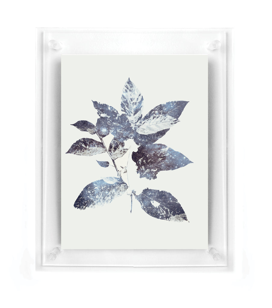 Galaxy Leaves - Wall Art