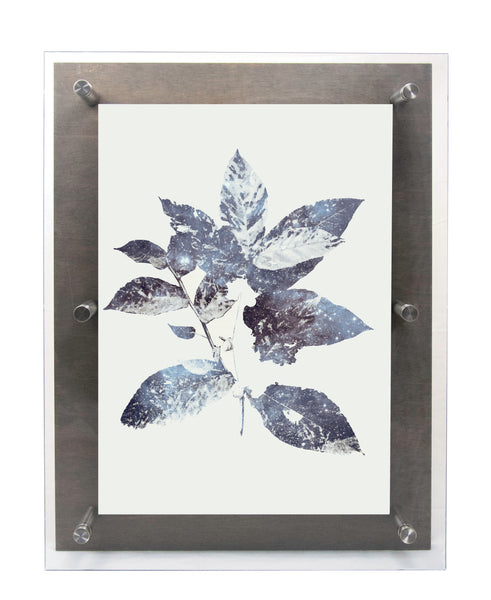 Galaxy leaves wall art