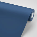 Paint-Less Marine Blue Wall Color