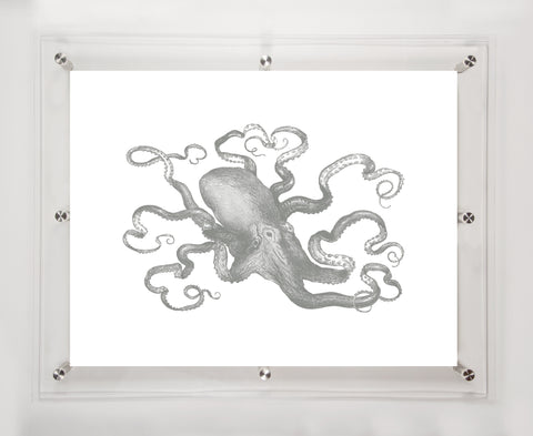 """OCTOPUS"" in MIDNIGHT 24""x18"""