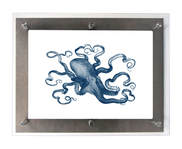 OCTOPUS - Wood & Acrylic Frame
