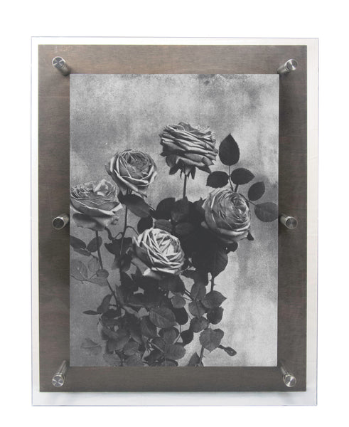 Black & White Roses - Wall Art