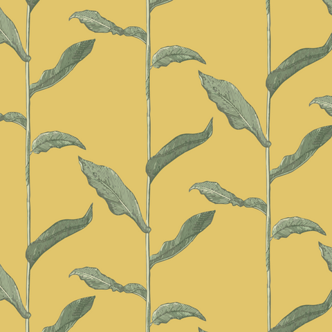Stalks - Dusty Yellow Wallpaper - Nomad Collection
