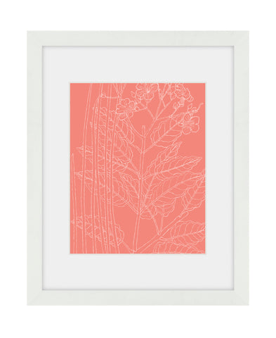 Summer Botanical - Coral - Framed Art