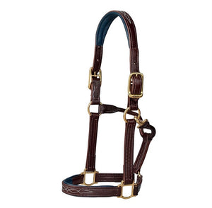 Walsh Signature Padded Halter