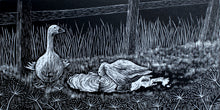 Load image into Gallery viewer, Molly Lemon Wood Engraving Geese