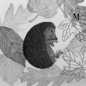 Sleeping Hedgehog Amongst the Leaves 2020