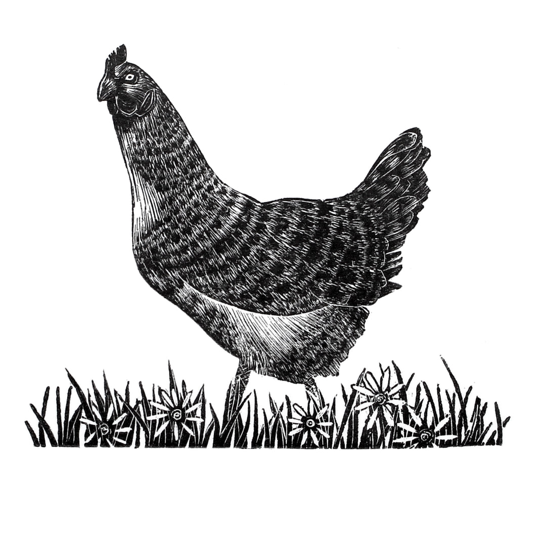 Hen Wood Engraving Molly Lemon